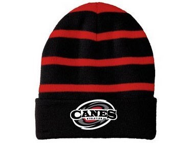 Striped Beanie (Embroidered Logo